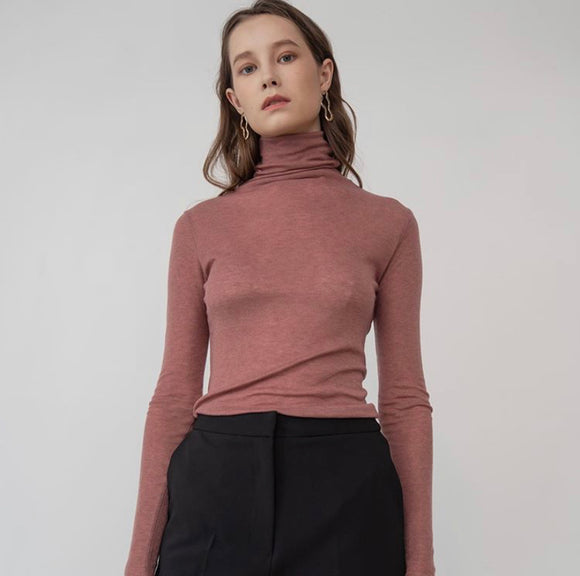 Sheer Layering Turtleneck