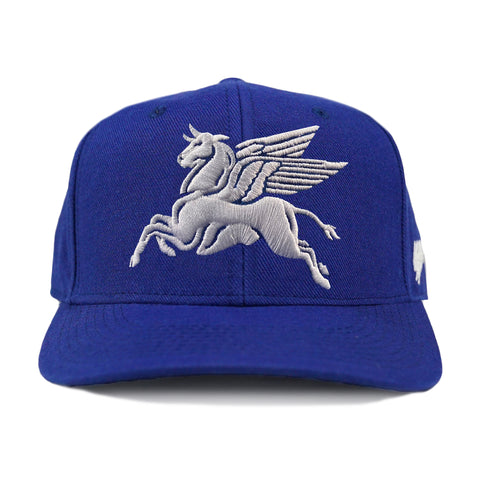 Durham Begasus Hat(black)