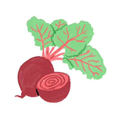 Organic Beet Root Extract