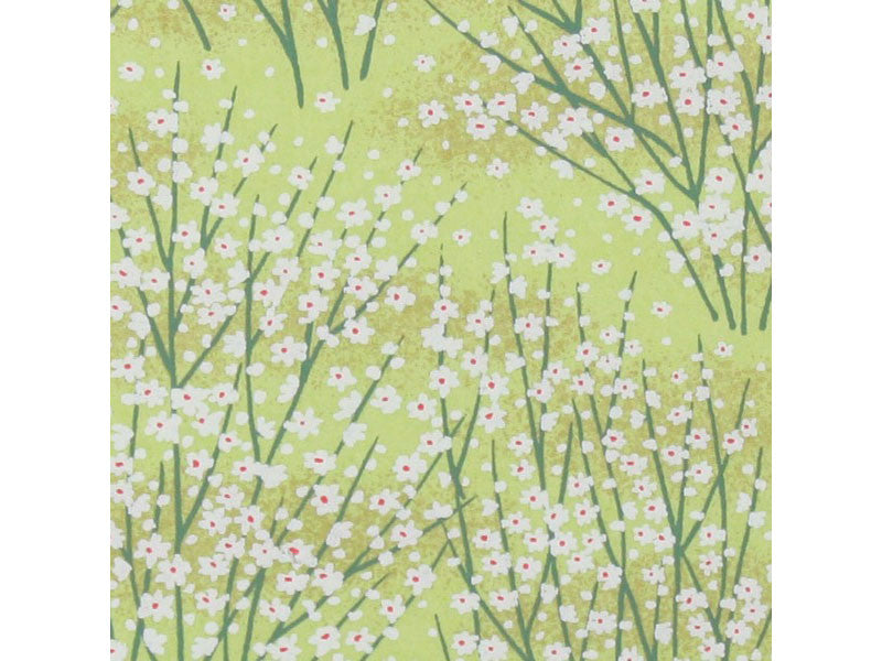 White and Green Daisy Chiyogami