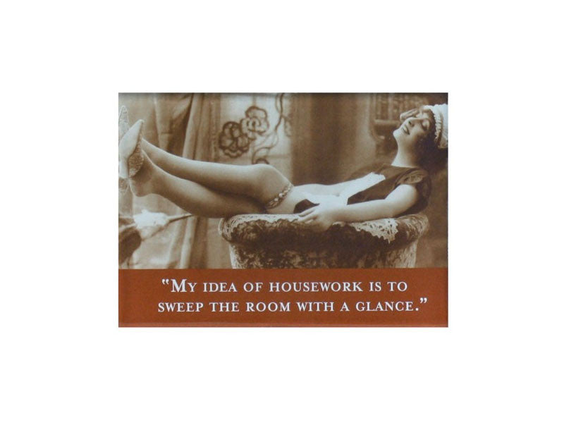 'My Idea of Housework is...' Magnet