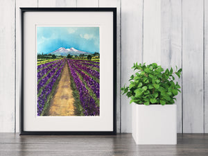 Mt. Shasta Lavender Farms ~ WatercolorPainting ~ Giclee Print