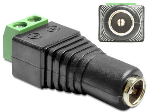 Delock Adapter DC 2.5 x 5.5 mm female > Terminal Block 2 pin Pitch 5.0 mm - Optiwire.ie