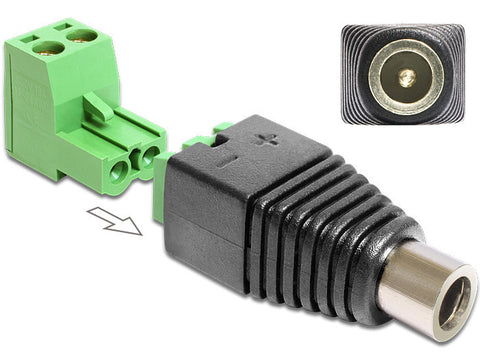 Delock Adapter DC 2.1 x 5.5 mm female > Terminal Block 2 pin 2-part - Optiwire.ie
