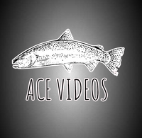 Ace Videos Trout Sticker. Car Bumper Sticker, Window Sticker