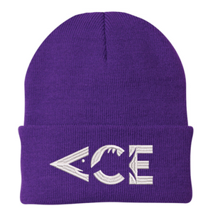 Ace Videos Logo Beanie