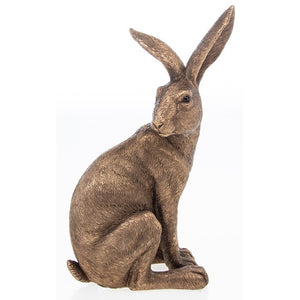 Reflections Bronze Hare Sitting