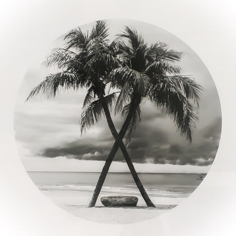 Round Palm Tree Print Frame - LX Crafts Co