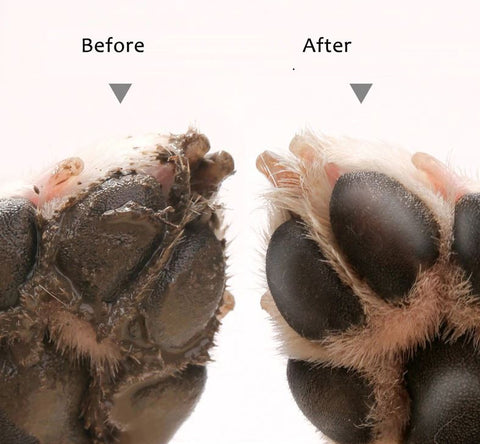 before_after_paw_cleaner