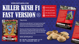 Killer Kush F1 Fast Version® Feminised - Gói 3 hạt