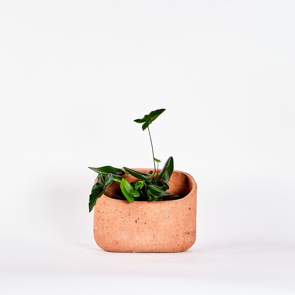 Pipe Planter — Medium