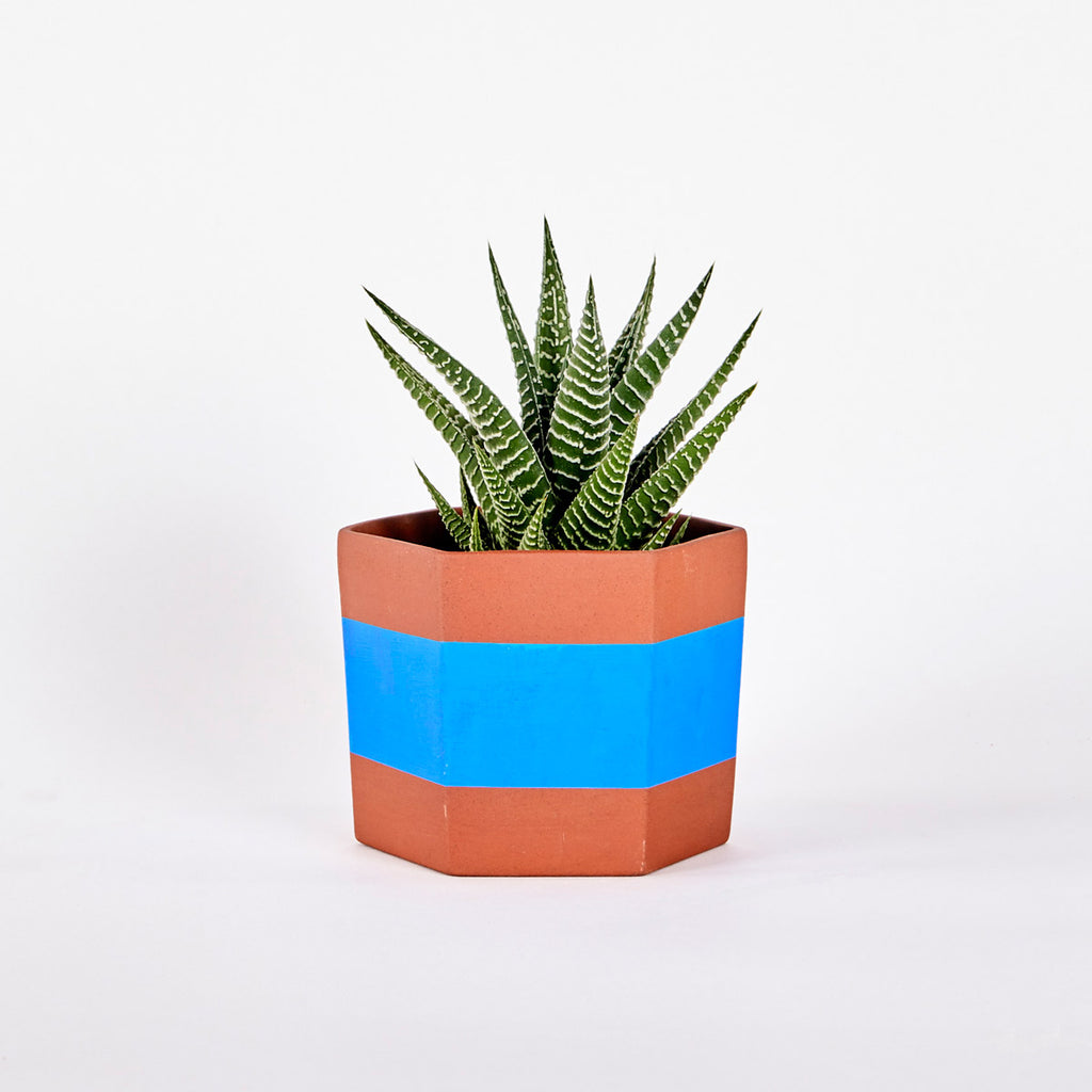 Terracotta HEX Planter Blue