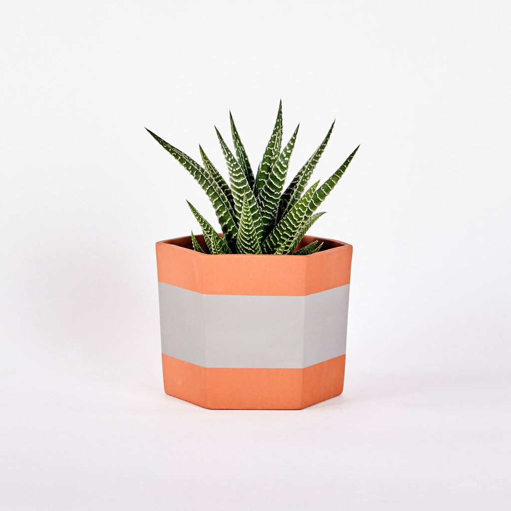 Terracotta HEX Planter Grey
