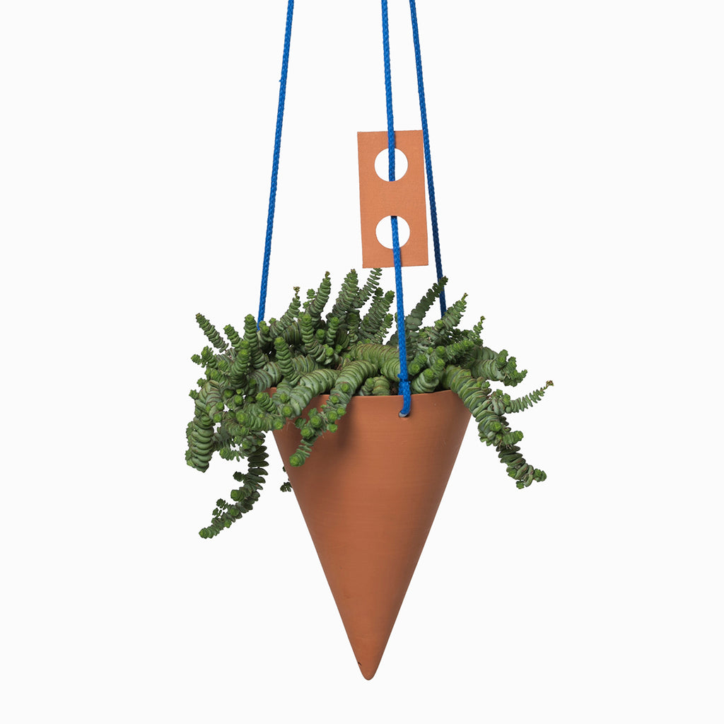Darkroom CONE terracotta sculptural design large plant hanger indoor plant — Blue
