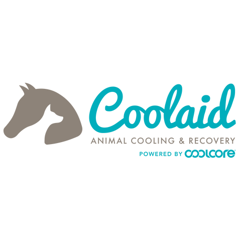 CoolAid Logo