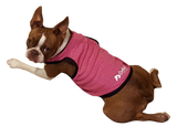 Closeout Dog Products