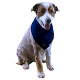 Dog Cooling Bandanas