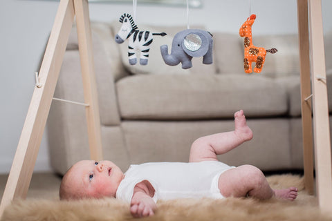Safari Baby Gym
