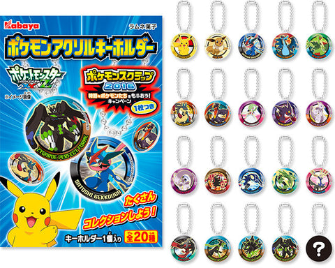 Pokemon Plate Key Chain- damaged package