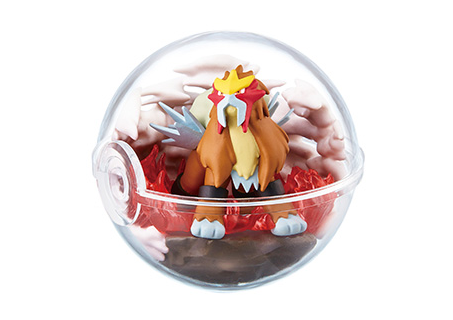 Pokemon Terrarium Collection 6