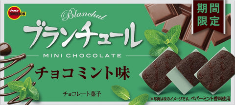 Blanchul Mini Chocolate: Chocolate Mint