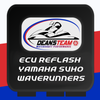 Dean's Team ECU Performance Reflash for Yamaha SVHO Waverunners - Dean's Team Racing / Watercraft Performance