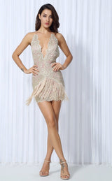 Sparkle & Shine Gold Lace Fringed Mini Dress - Fashion Genie Boutique