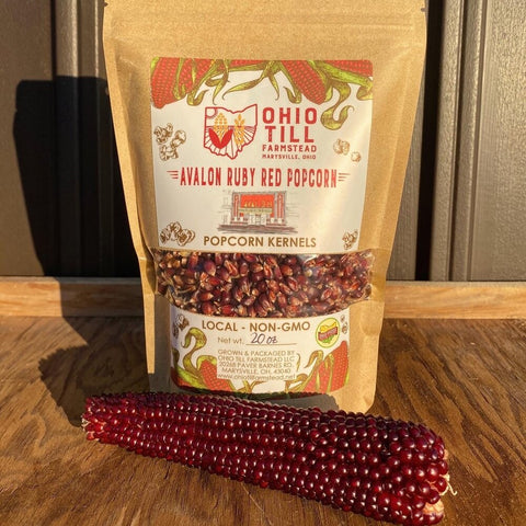 Avalon Ruby Red Popcorn Kernels Ohio Till Farmstead