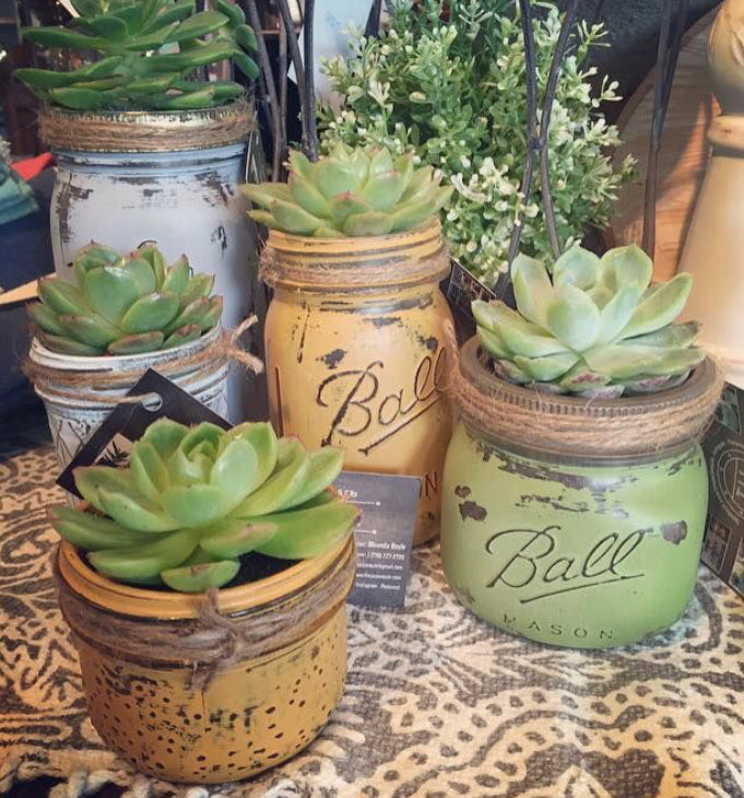 Chalk Paint Succulent Garden Workshop