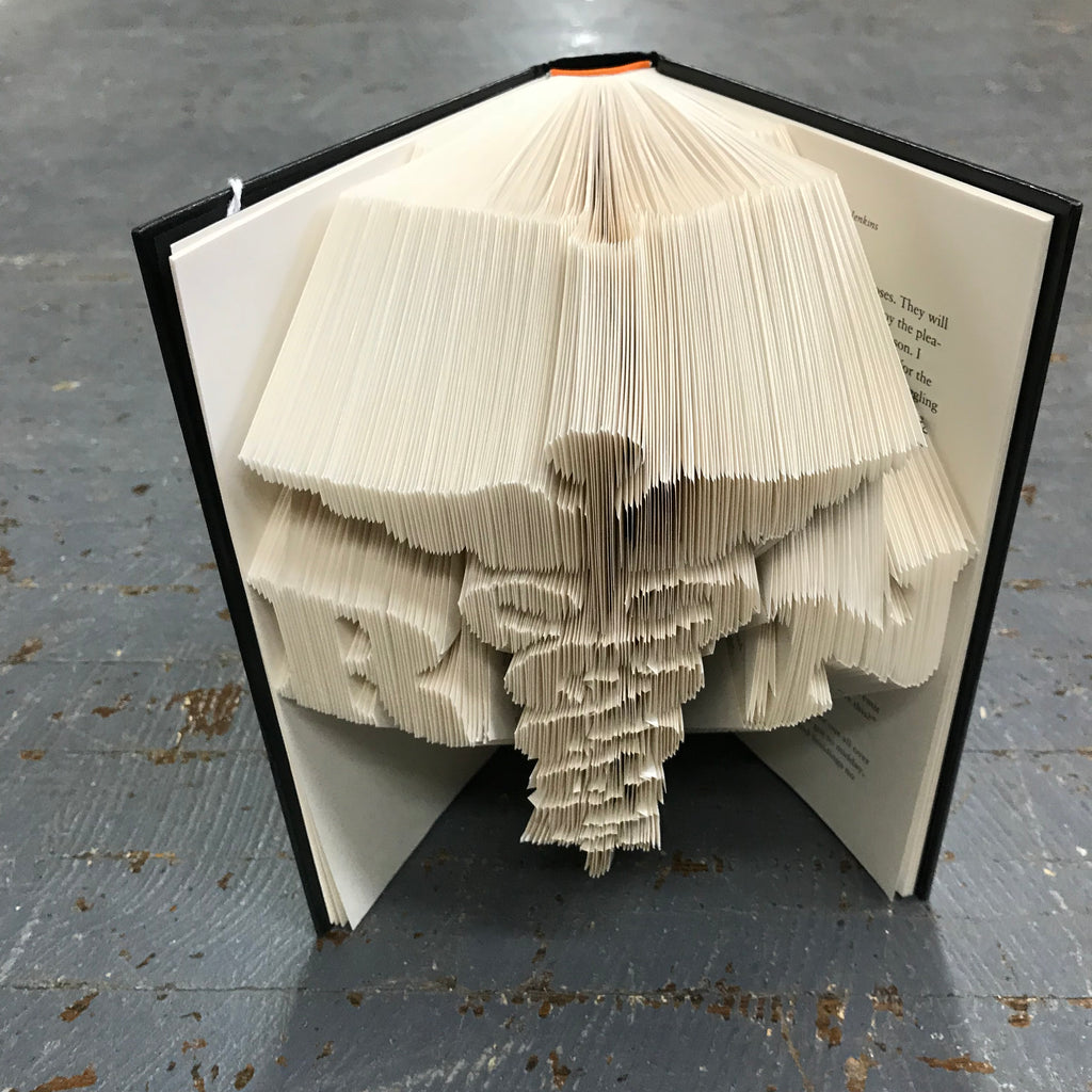 Folded Book Art Custom Folded Pages Hardback Book Word RN Nurse