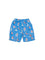Boys Printed Bathing Suit