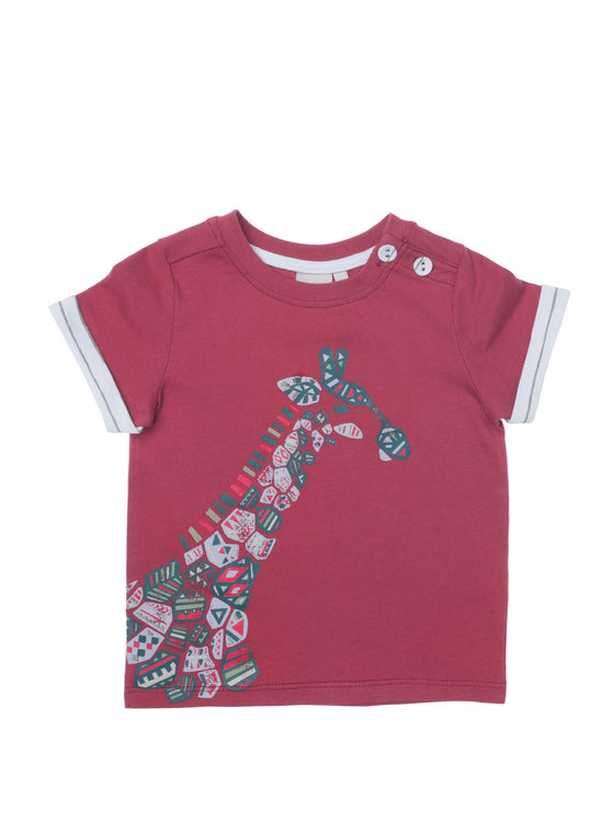 Boys Apple jersey short sleeve t-shirt with front print & contrast cuff
