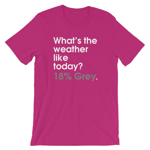 What's The Weather Like Today? 18% Grey - Green Screen Apparel T-Shirt
