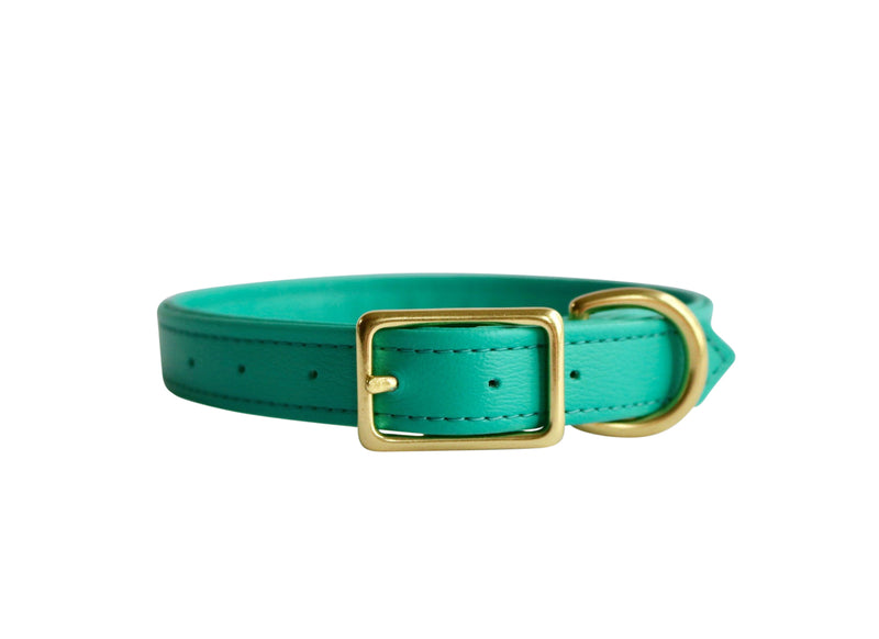 Dog Collar I Gizmo Green