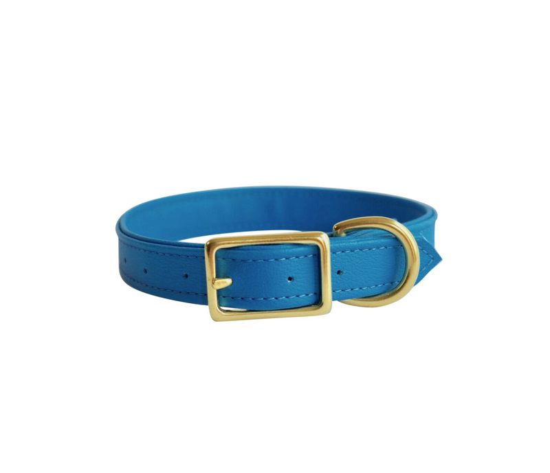 Dog Collar I Buddy Blue