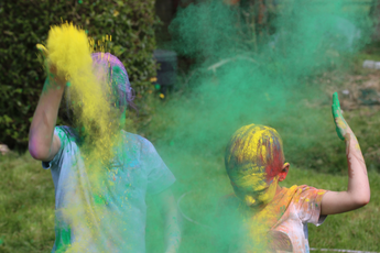 Holi Colour Powder