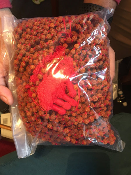 10 Rudraksha Mala  5-6mm with red knotting and short tassels ( 10 mala in packet)