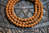 8mm Natural Rudraksha Bodhi Seed Gemstone Mala Prayer Deep Brown Round Loose Beads 36 inch 108 Beads