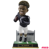 NCAA College Football Gate Series Bobbleheads