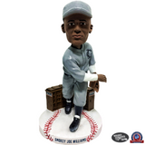 Negro Leagues Centennial Team Bobblehead Series