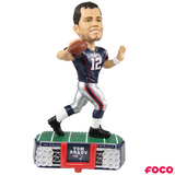 2019 NFL Stadium Lights Bobbleheads (Presale)