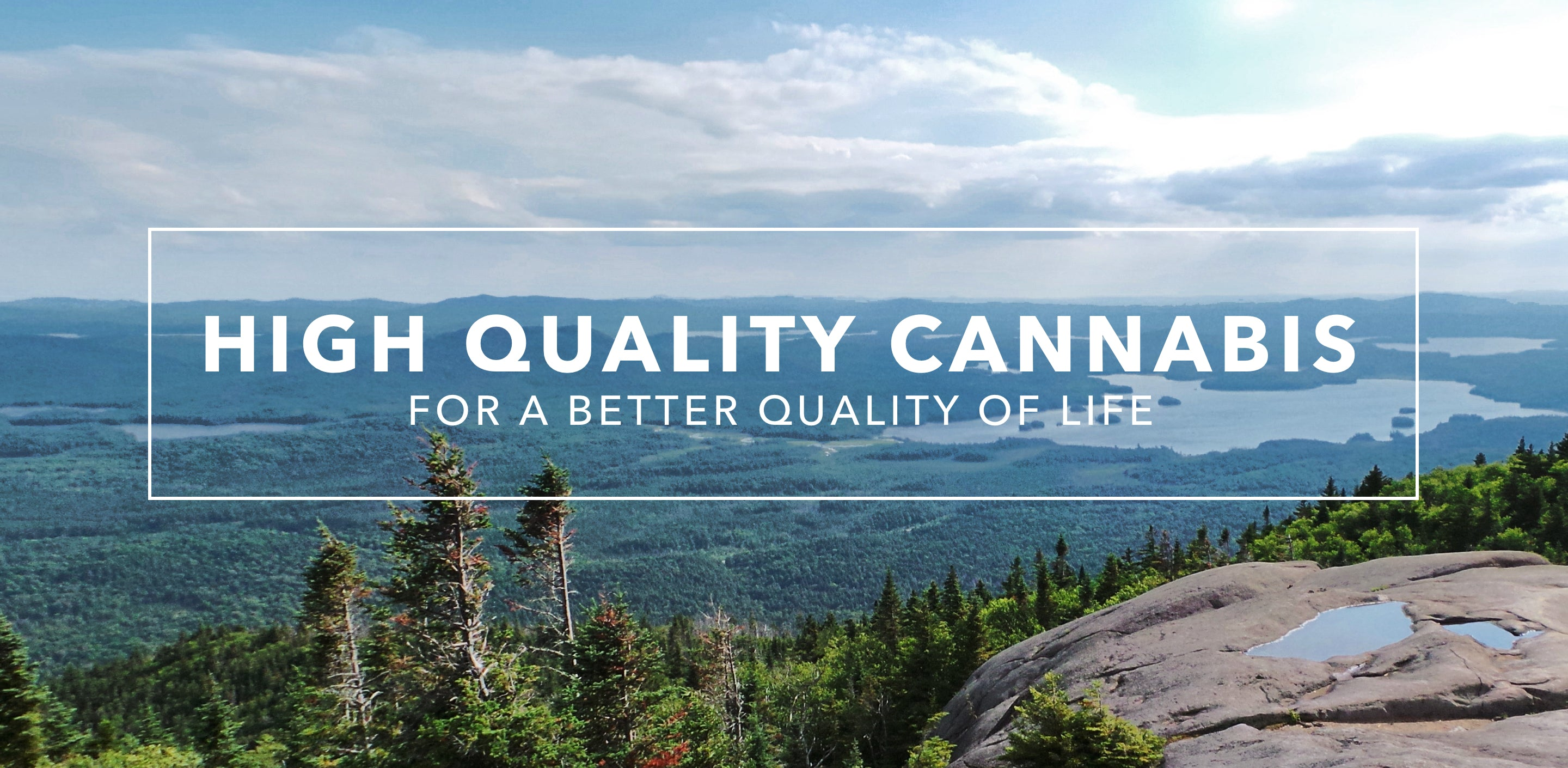 High Quality Cannabis for a better quality of life