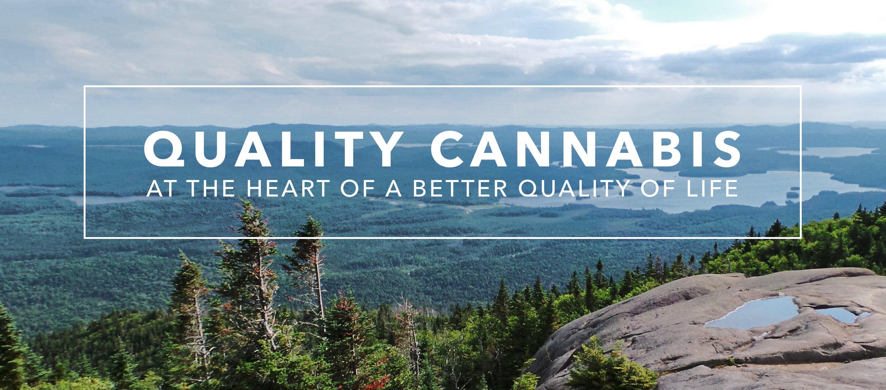 Quality Cannabis at the heart of a better quality of life