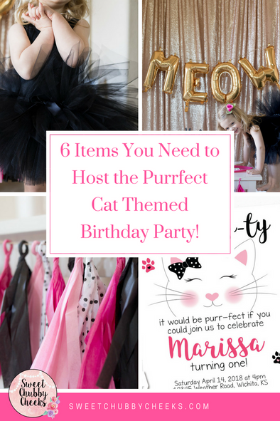 6 Items you Need to Host the Purr-fect Cat Themed Birthday Party!