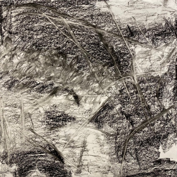 Juanita Bellavance, Early morning bliss concept drawing, From the Chestatee River portfolio, 2021, Charcoal on paper, 24 x 24 inches.