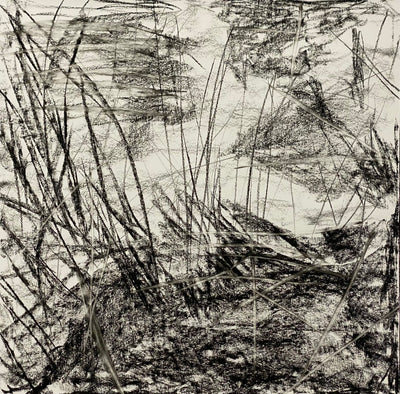 Juanita Bellavance, Just the way it is, From the Chestatee River portfolio, 2021, charcoal on paper, 24 x 24 inches.