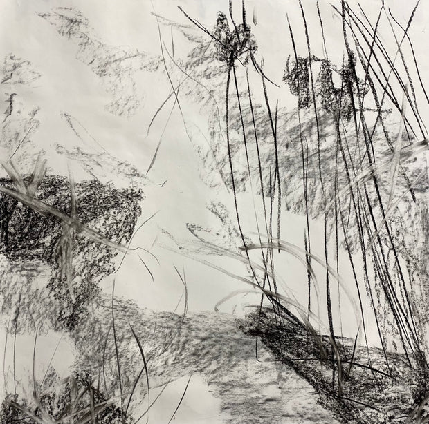 Juanita Bellavance, Spring joy concept drawing, From the Chestatee River portfolio, 2021, Charcoal on paper, 24 x 24 inches