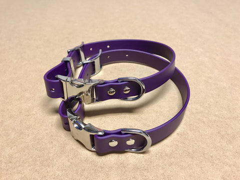 Argos Gear Purple Cretan Buckle Dog Collar - Collars - Argos Dog Gear - Made in the USA - Guaranteed for Life - Ready for Every Adventure - Copyright all rights reserved