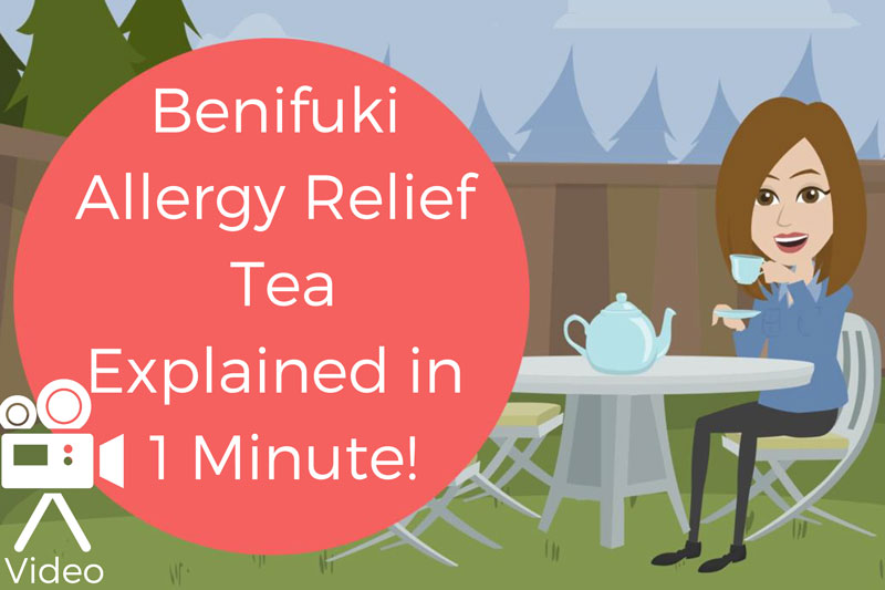 What is Benifuki Tea? Explained in One Minute