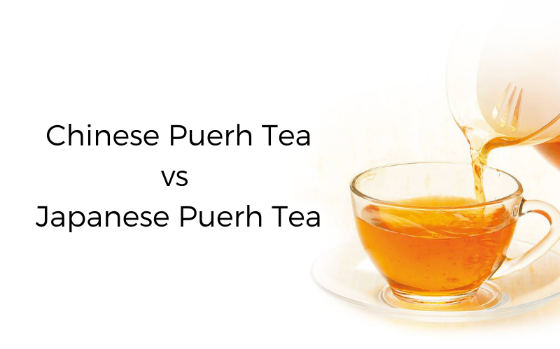 Chinese Puerh Tea vs Japanese Puerh Tea